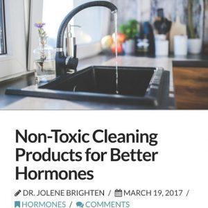 Home Detox 101  Free DIY NonToxic Cleaning Recipes usinghellip